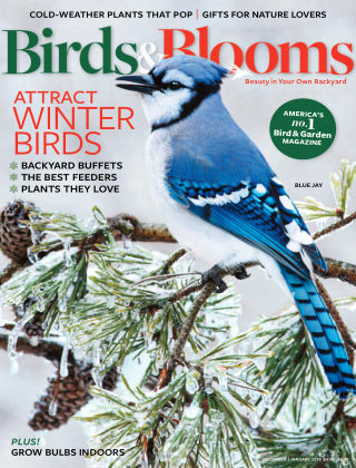 Birds & Blooms Dec-Jan 2018