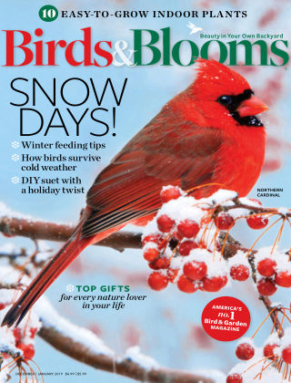 Birds & Blooms Dec-Jan 2019