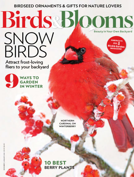 Birds & Blooms November 13, 2019 00:00