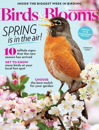 Birds & Blooms Feb-Mar 2020