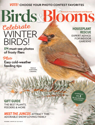 Birds & Blooms Dec Jan 21