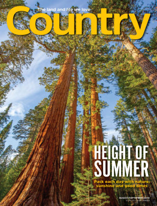 Country Aug-Sep 2018