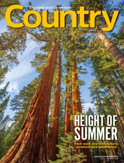 Country July 20, 2018 00:00