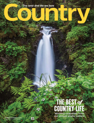 Country Feb-Mar 2019