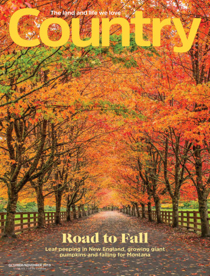Country September 18, 2019 00:00