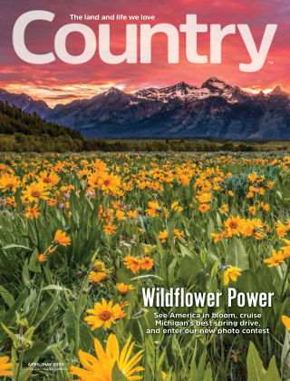 Country Apr-May 2020