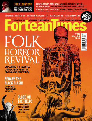 Fortean Times Issue 381