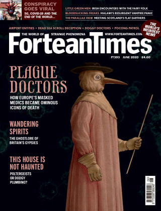 Fortean Times Issue 393