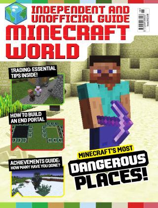 Minecraft World Issue26