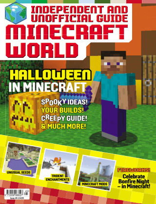 Minecraft World 45