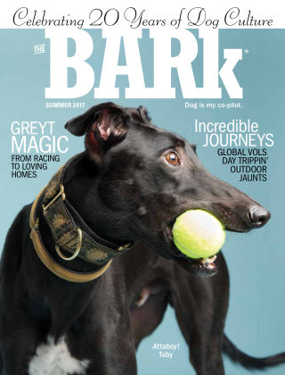 The Bark Summer 2017