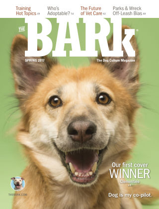 The Bark Spring 2017