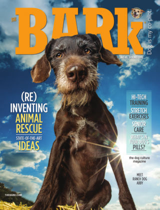 The Bark Spring 2016