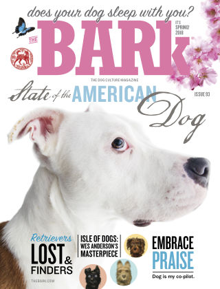 The Bark Spring 2018