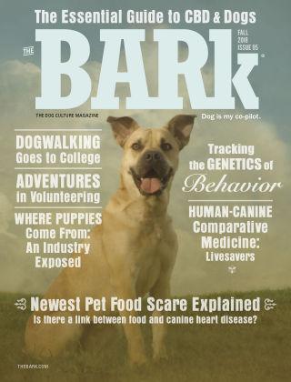 The Bark Fall 2018