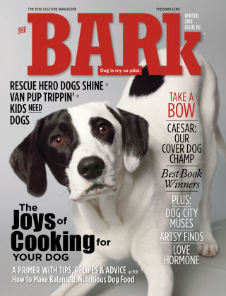 The Bark Winter 2018