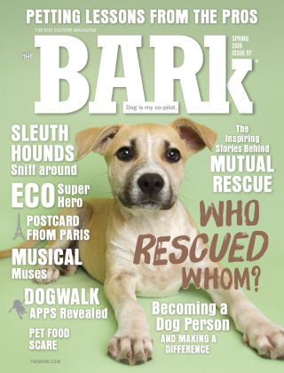 The Bark Spring 2019