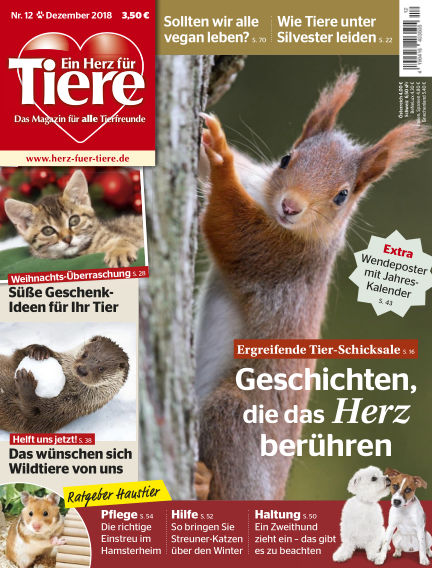 Ein Herz für Tiere November 16, 2018 00:00