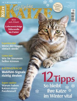 Geliebte Katze 12_2018
