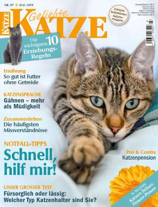 Geliebte Katze 07_2019