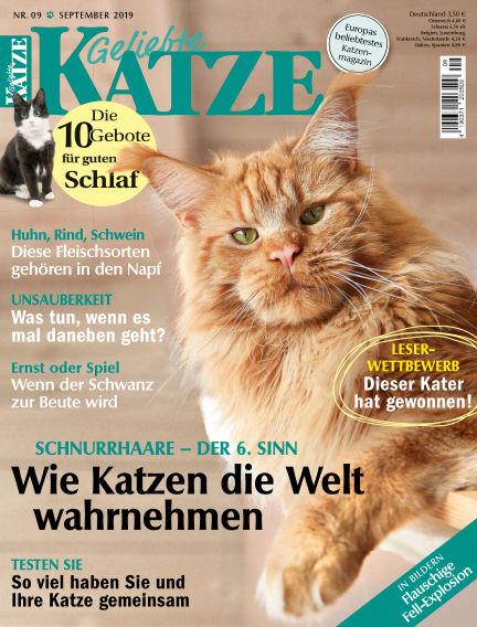 Geliebte Katze August 13, 2019 00:00