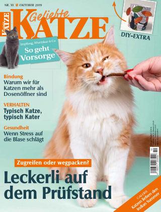 Geliebte Katze 10_2019
