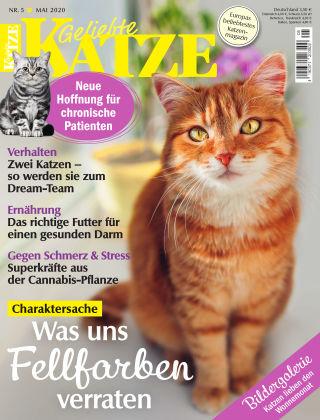 Geliebte Katze 05_2020