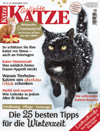 Geliebte Katze 12_2020