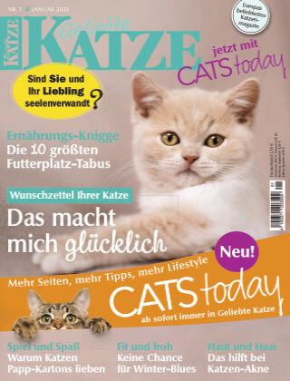Geliebte Katze 01_2021