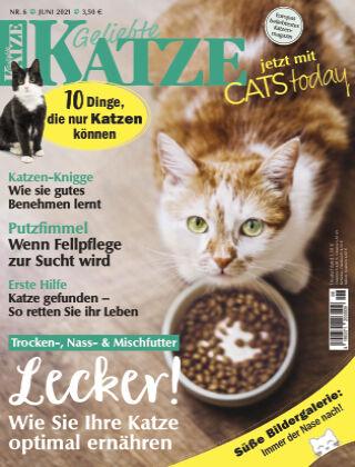 Geliebte Katze 06_2021