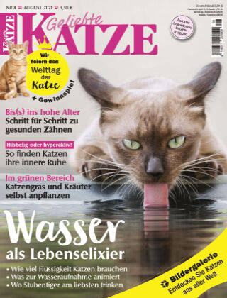 Geliebte Katze 08_2021