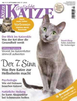 Geliebte Katze 09_2021