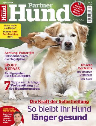 Partner Hund 04_2018