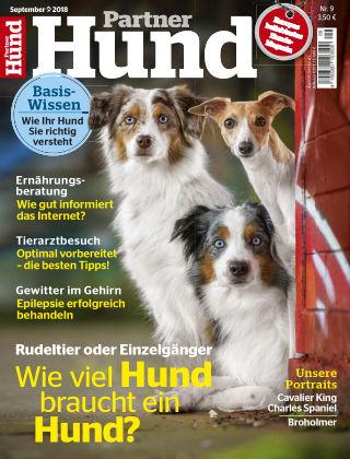 Partner Hund 09_2018