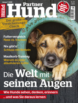 Partner Hund 01_2019