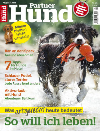 Partner Hund 08_2019