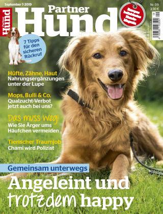 Partner Hund 09_2019