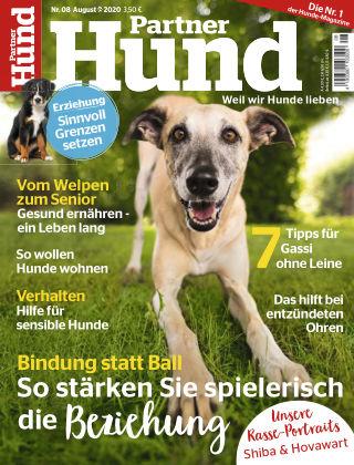 Partner Hund 08_2020
