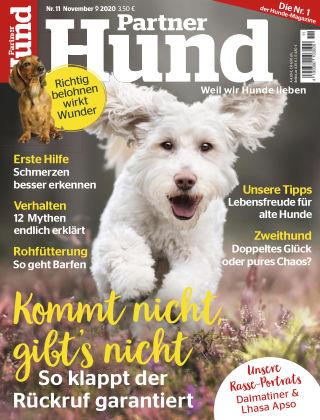 Partner Hund 11_2020