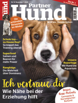 Partner Hund 12_2020