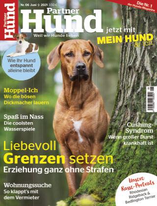 Partner Hund 06_2021