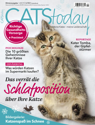 CATStoday 01_2019