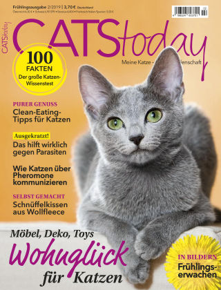 CATStoday 02_2019
