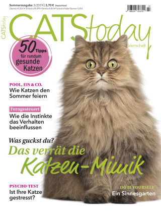 CATStoday 03_2019