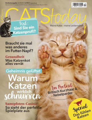 CATStoday 04_2020