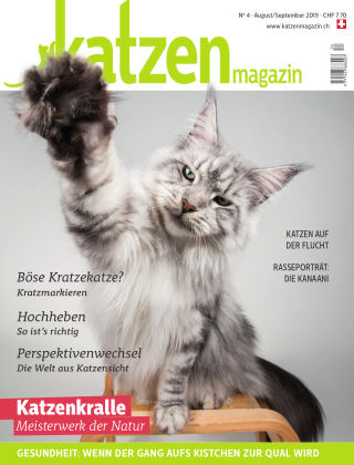 Katzen Magazin 4/19