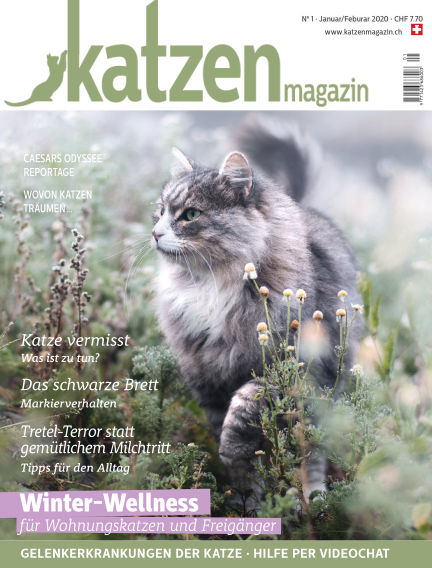 Katzen Magazin January 16, 2020 00:00