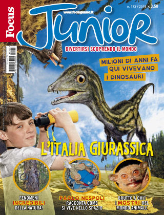 Focus Junior 2017-05-19