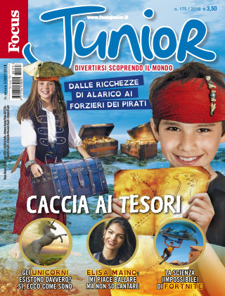 Focus Junior 2017-07-19