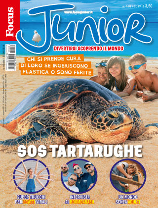 Focus Junior 2019-08-21